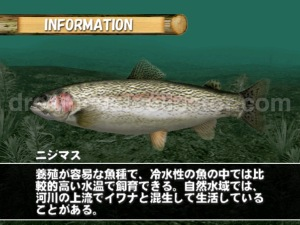 Bass Rush Dream ~Eco Gear PowerWorm Championship ©2000 Visco Corporation. The game has a wealth of knowledgeabout all the lures in the game as well as the different species of fish. ©2018 image by dreamcastcollector
