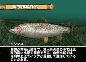 Bass Rush Dream ~Eco Gear PowerWorm Championship ©2000 VISCO CORPORATION. The game provides a wealth of knowledge about the differentspecies of fish featured in the game. ©2018 image by dreamcastcollector