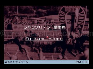 The network mode has to further choices the first is Dream horse betting ticket which it was possible to download data from the Japanese Racing Association with new content being available every Friday. The second choice Dream Home which allowed access to the dricas network usually a dedicated site for the title in question. ©1999 Shangri-La
